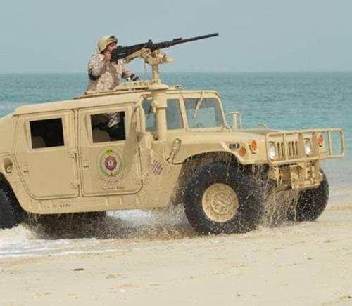 23 Countries Join Gulf Shield 1 Drills in Saudi Arabia