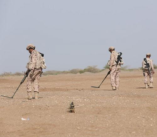 UAE Playing Key Role in Global, Regional Demining Efforts