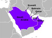 GCC Eyes Expanding Peninsula Shield Force