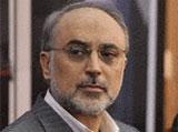 Salehi: Iran has no Problem with Saudi Arabia