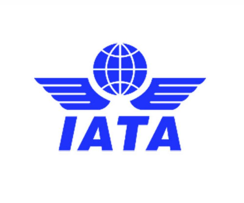 IATA: Aviation Industry Losses to Top $84 Billion in 2020