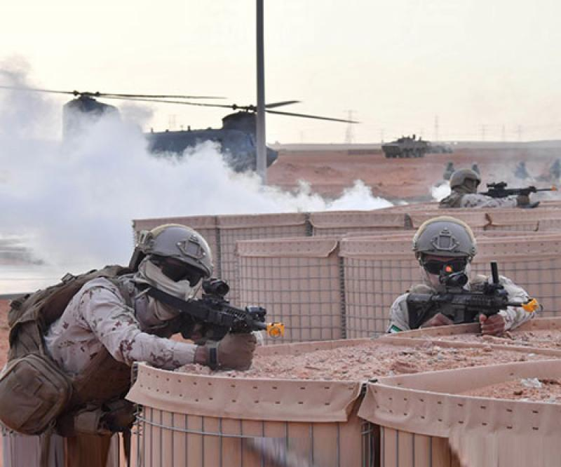 UAE, US Conclude Joint 'Native Fury 20' Military Exercise