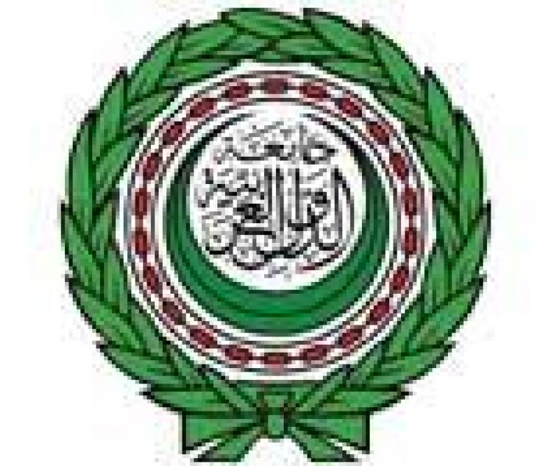 Arab League Criticizes Strikes on Libya