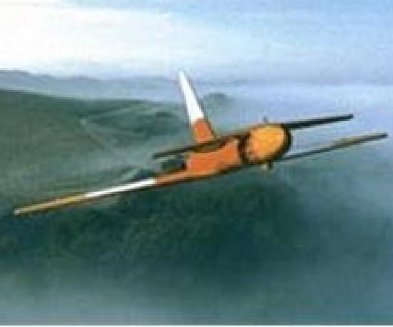 Iran: Drones with Air Strike Capabilities