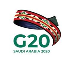 G20 Leaders Hold Virtual Summit on COVID-19