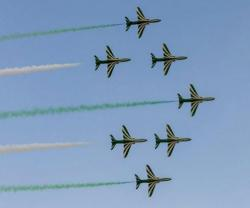 Saudi Falcons Took Part in IADE Exhibition in Tunisia