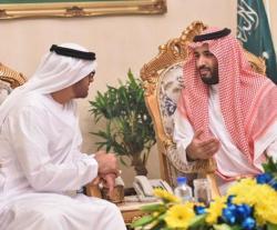 Saudi Defense Minister Receives Abu Dhabi Crown Prince