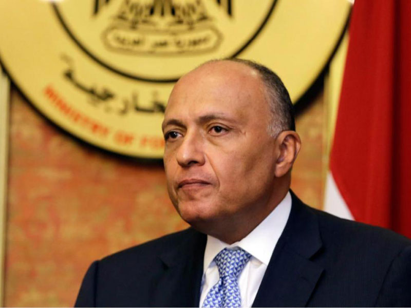 Arab League Close to Forming Joint Arab Military Force